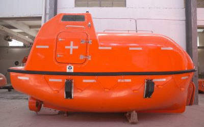 5m Totally Enclosed Lifeboat ( NM50F/C )