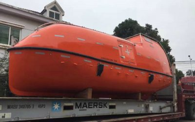 8.5m Totally Enclosed Lifeboat ( NM85F )