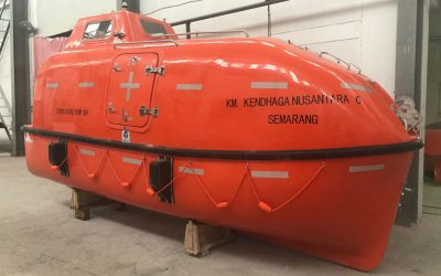 Small 5m Totally Enclosed Lifeboat ( NML50C )
